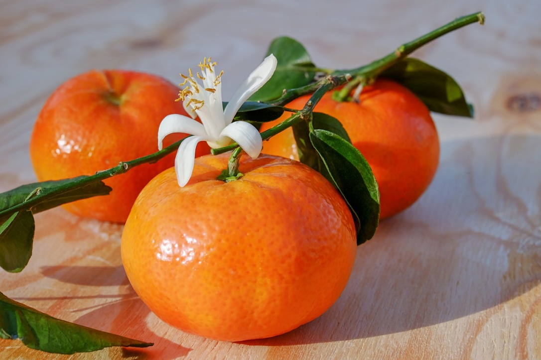 tangerines-3114765_1280.jpg